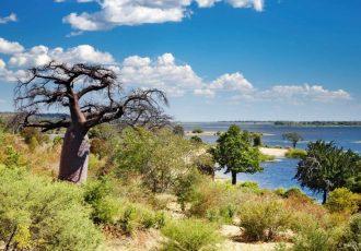 Botswana_River_cobe_landscape