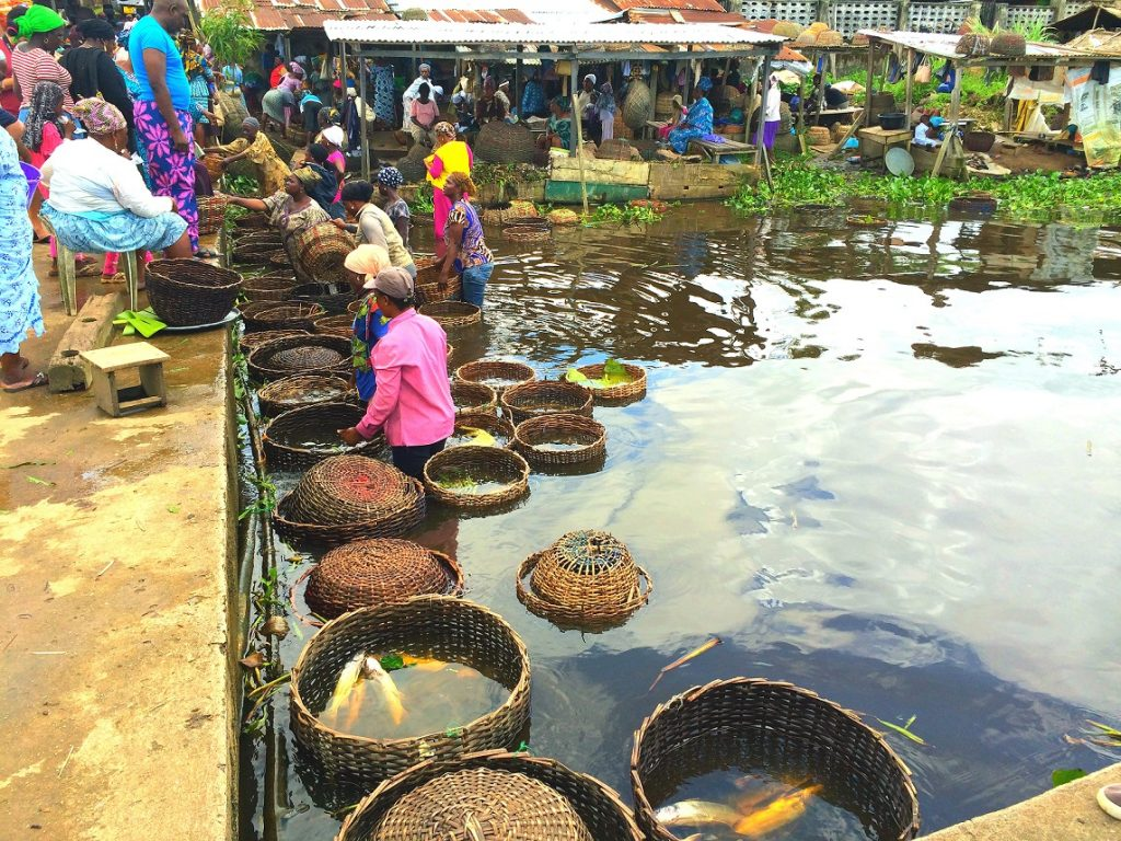 Epe Fish Market - unusual things to do in Lagos
