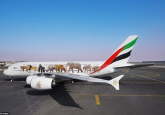 Repainted Emirates Aircraft - customized wildlife design