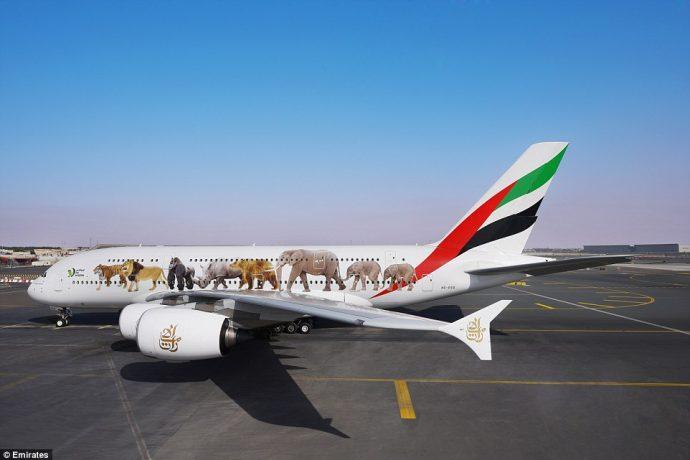 Repainted Emirates Aircraft - customized wildlife design
