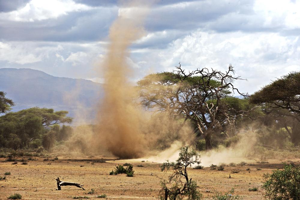 Sandstorm in Amboseli Park in Kenya