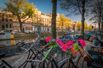 bicycle-ride-in-amsterdam