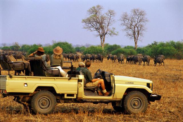 nairobi-wildlife