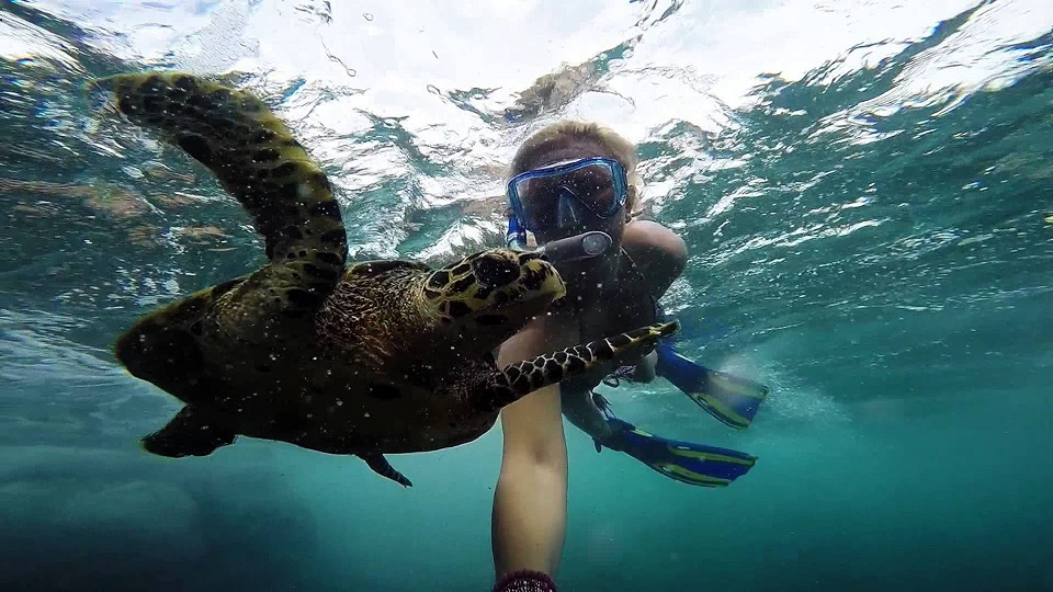 snorkelling-in-seychelles